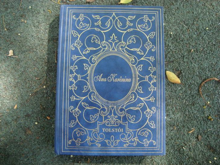 Capa do livro Ana Karênica de Liev Tolstoi