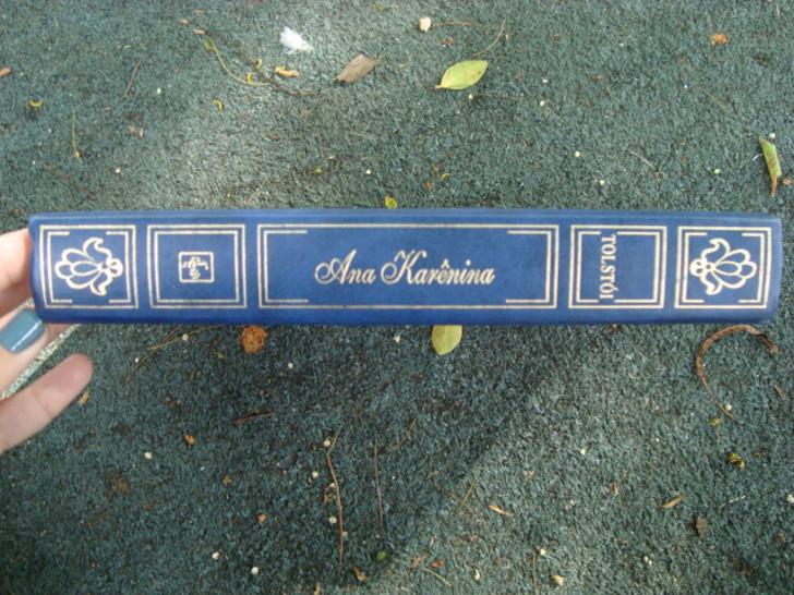 lombada do livro Ana Karênica de Liev Tolstoi