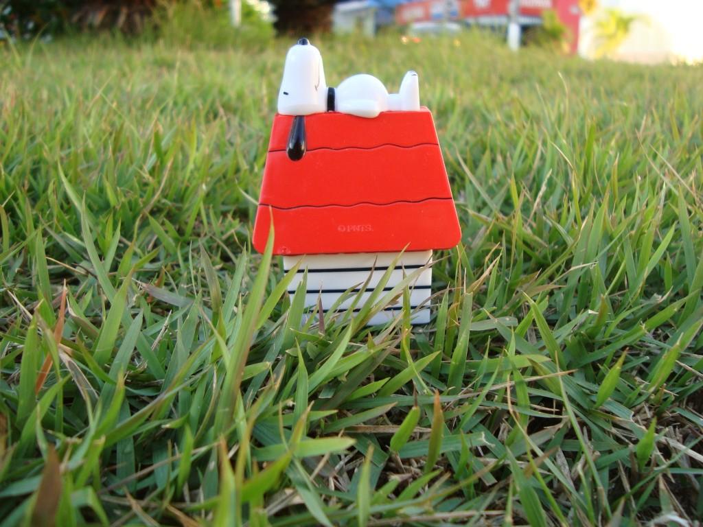 Snoopy na casinha :)