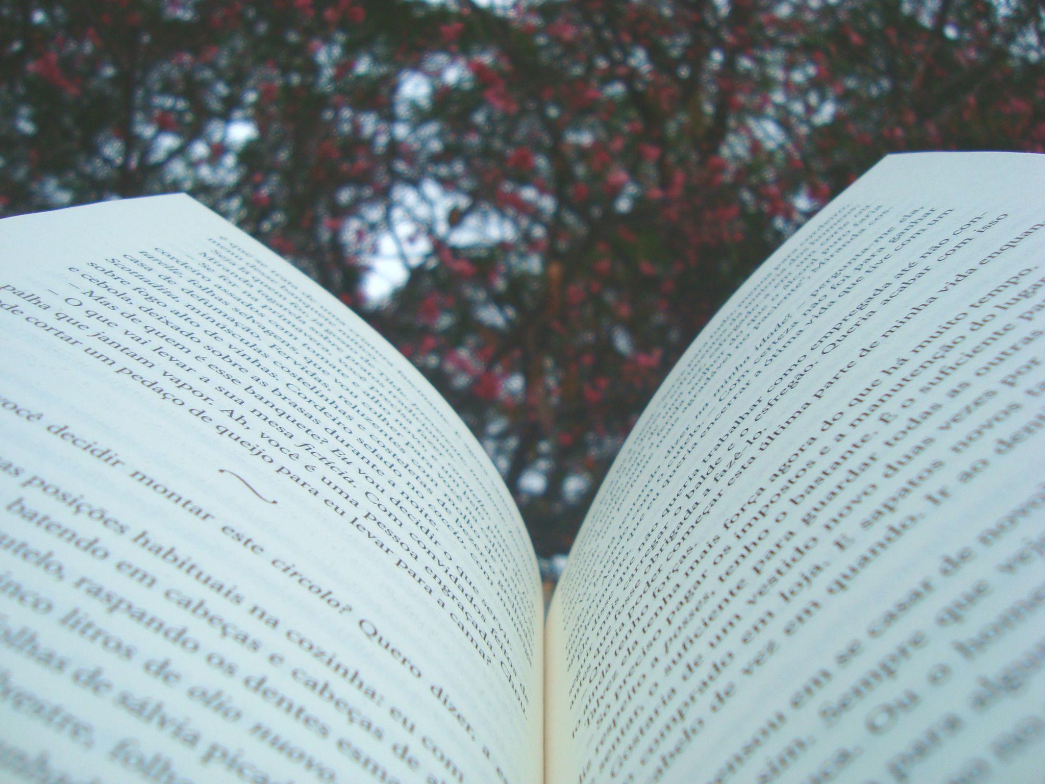 paginas internas do livro a doce vida na úmbria