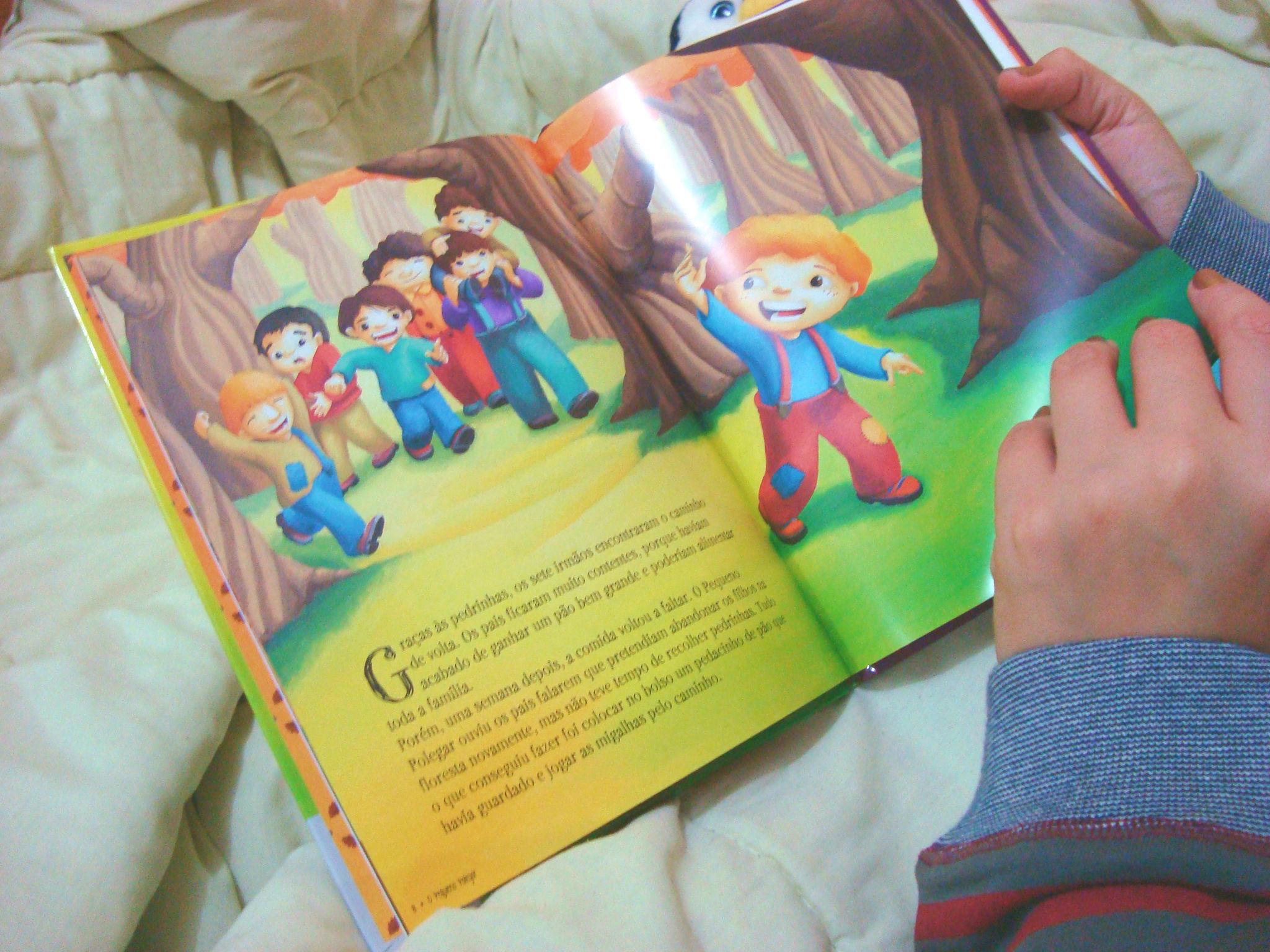 livro 17