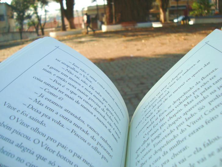 Páginas do livro O sofá estampado
