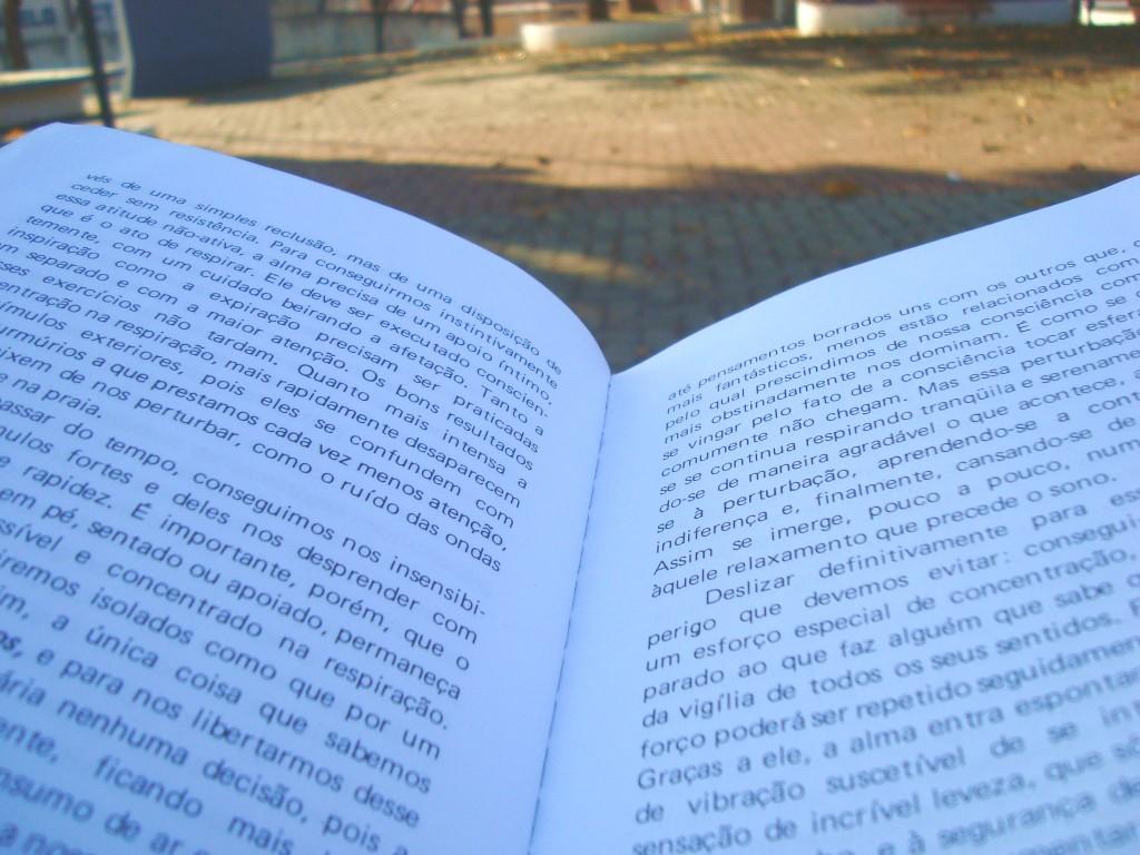 páginas do  livro A Arte Cavalheiresca do arqueiro zen