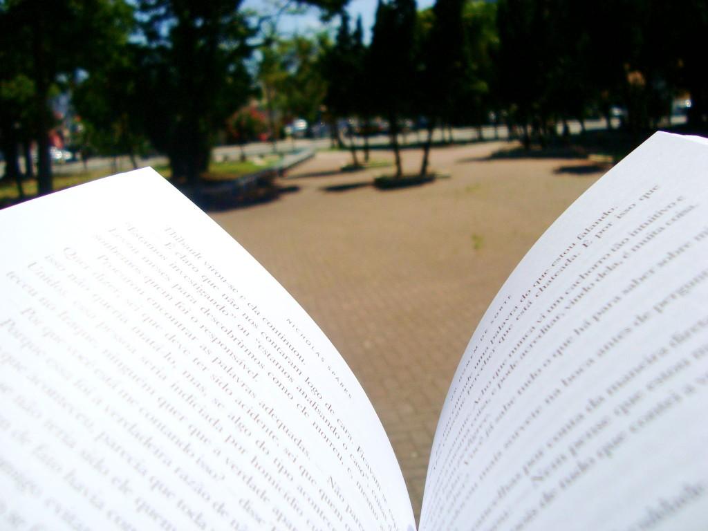 Páginas do livro Um homem de sorte