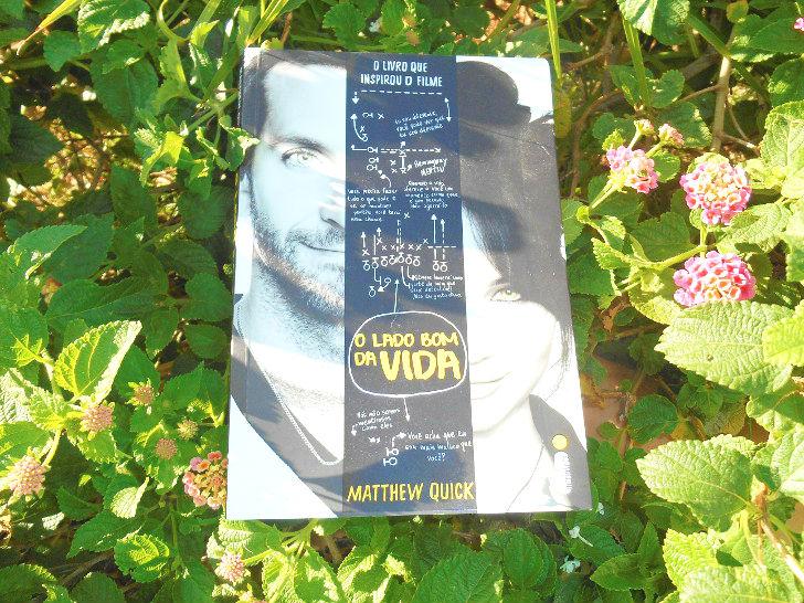 capa do livro O lado bom da vida