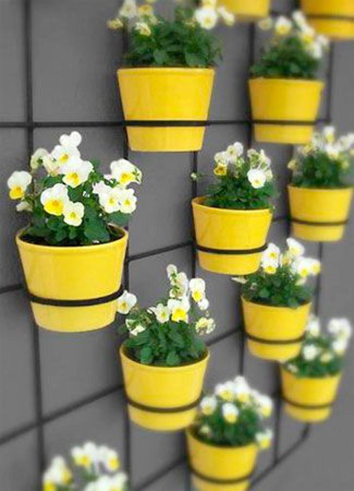 decoração: parede com vasos amarelo