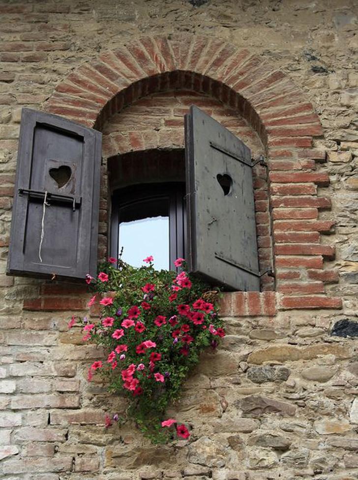 janela rústica com flores