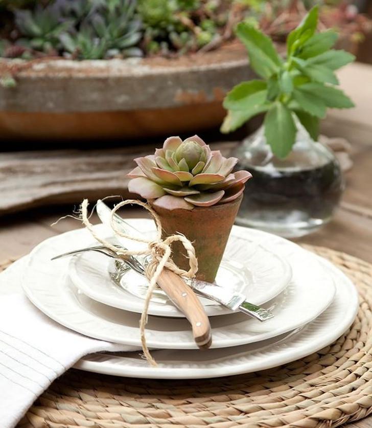 decoração para mesa com suculentas