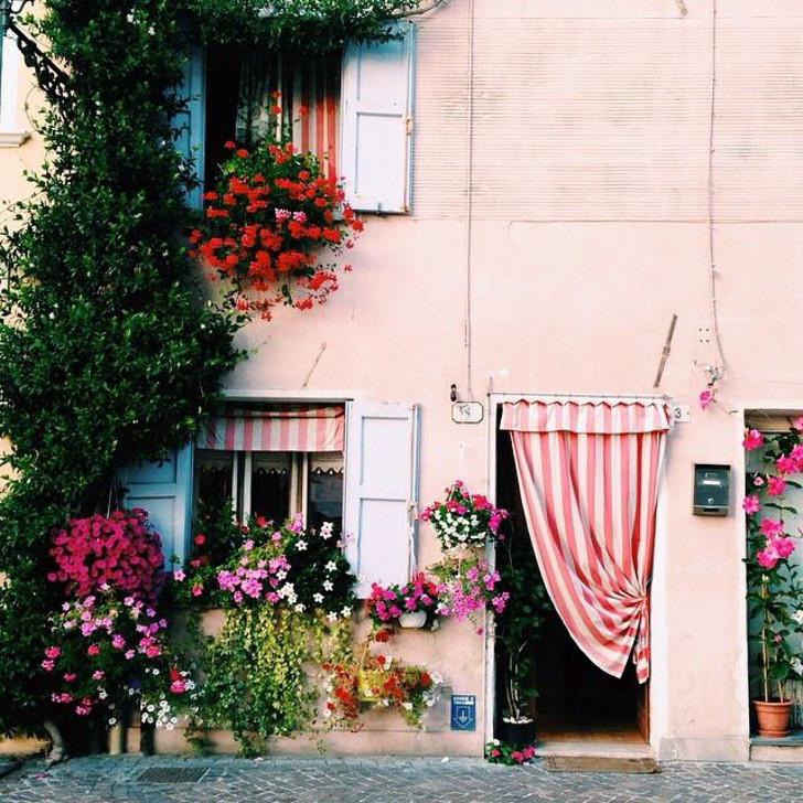 fachada com muitas flores