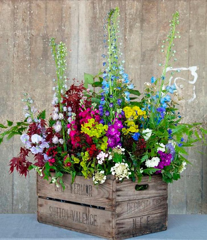 arranjo de flores coloridas em caixote