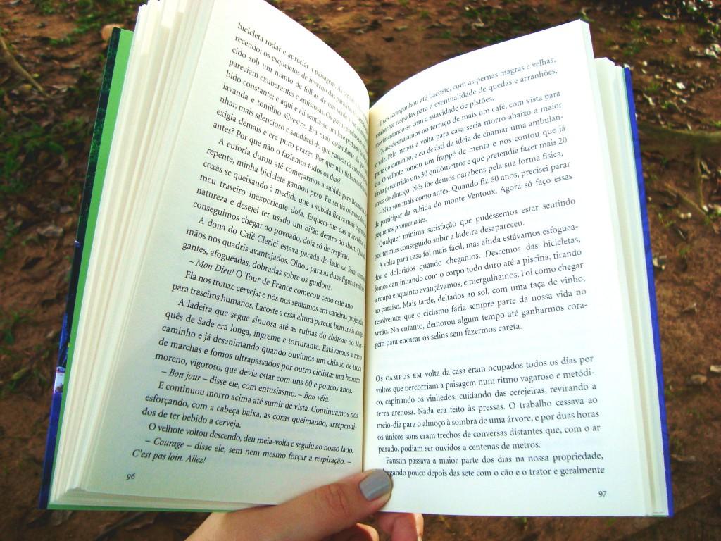 """páginas do livro """"Um ano na Provence"""""""