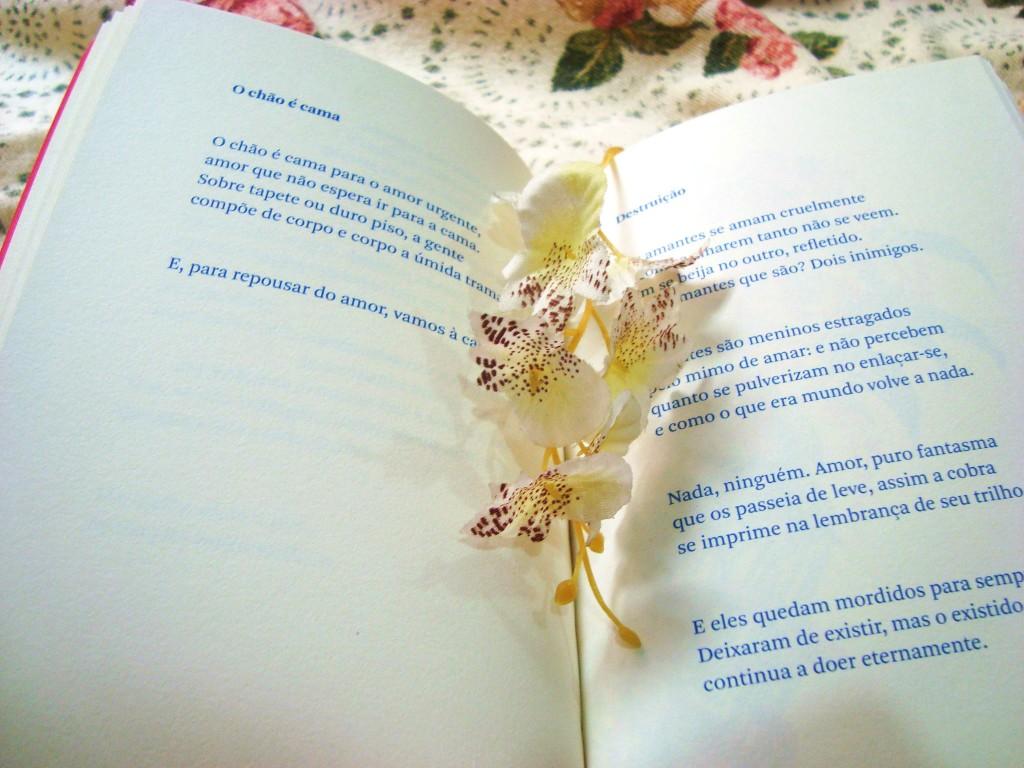 livro de poesias de Carlos Drummond de Andrade