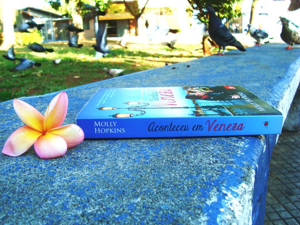 lombada do livro - Aconteceu em Veneza