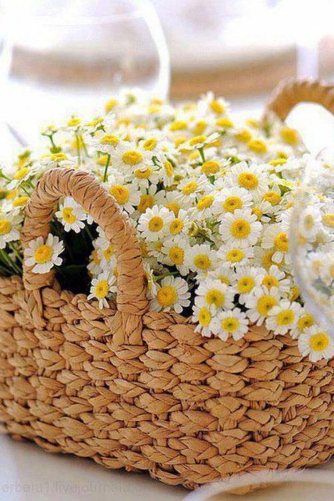 decoração com flores - cesta de margaridas