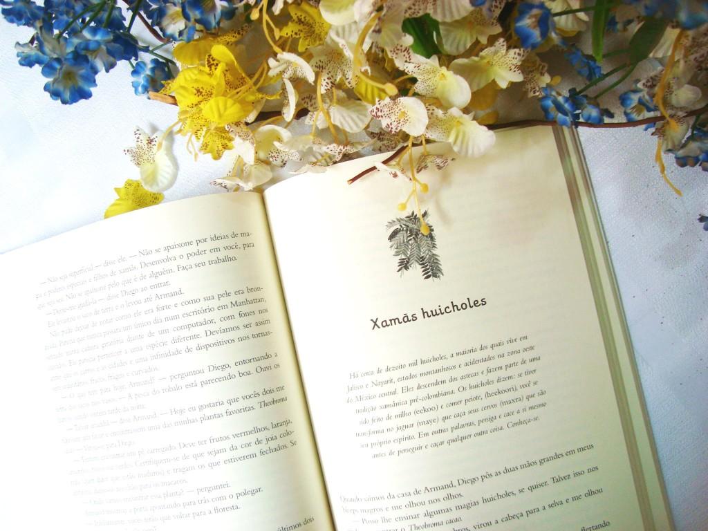 livro nove plantas do desejo e a flor da estufa
