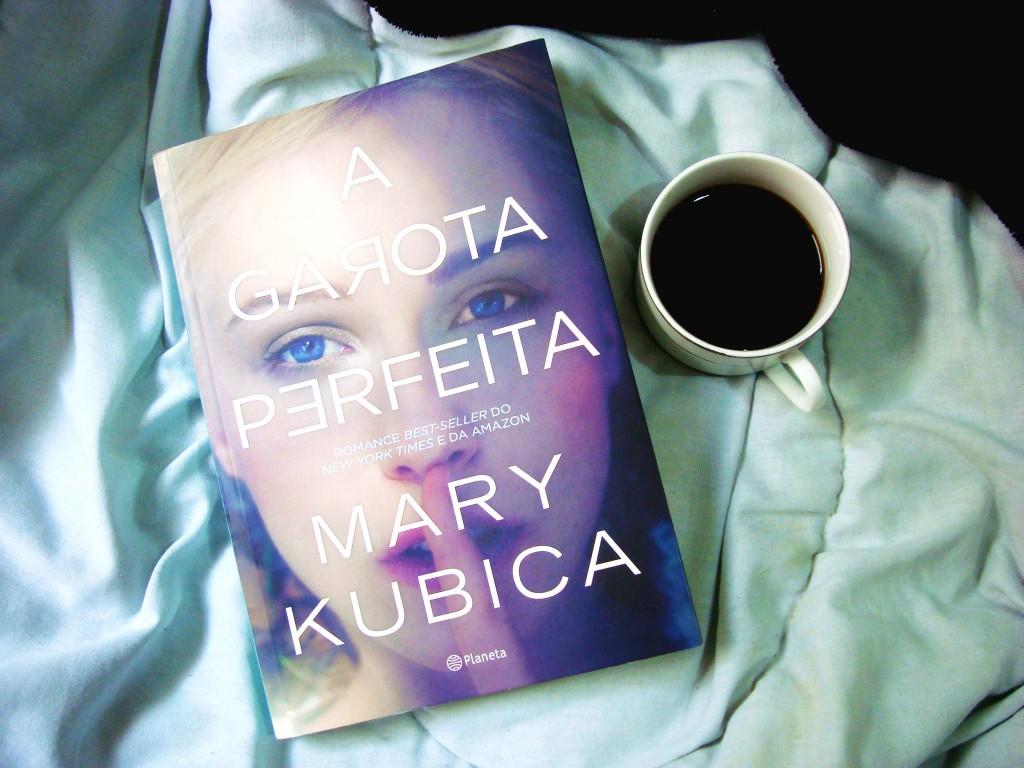 resumo do livro - a garota perfeita