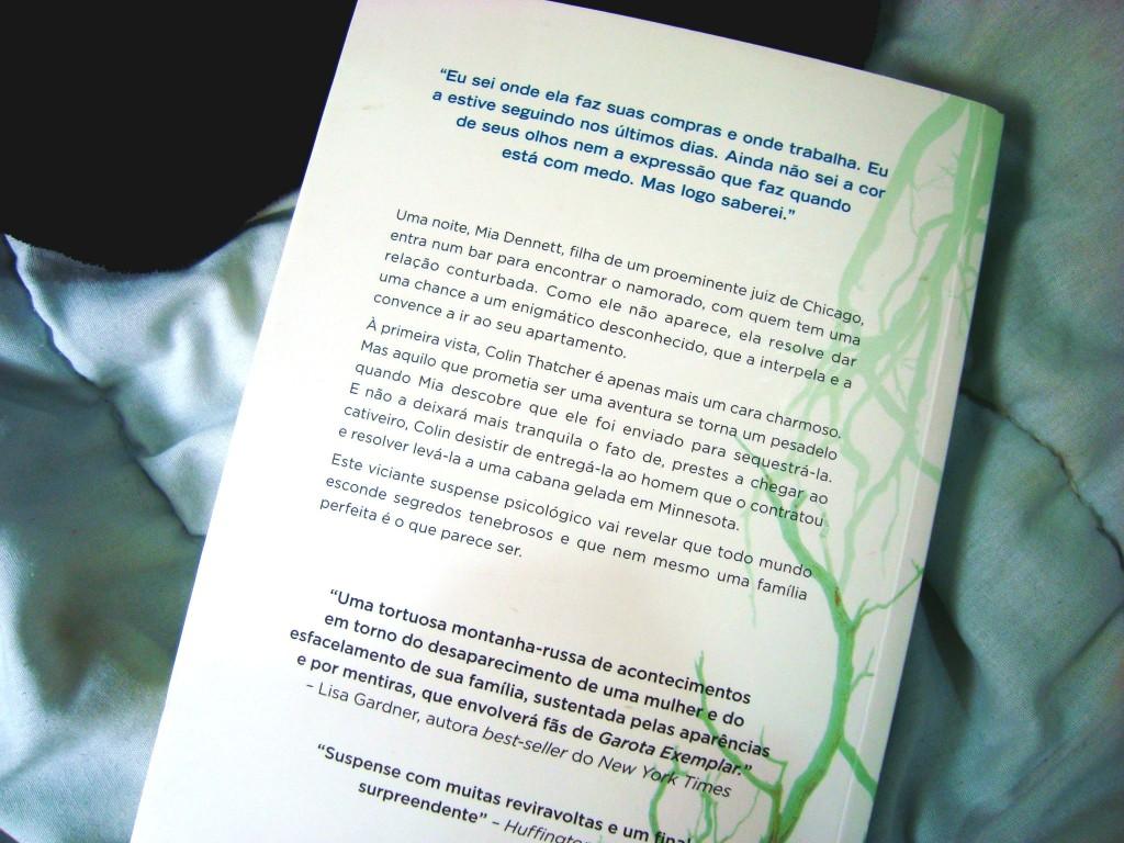 contra-capa do livro - a garota perfeita de mary kubica - resumo