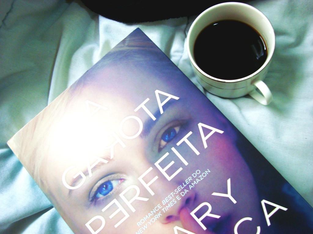 resumo do livro -  a garota perfeita - mary kubica