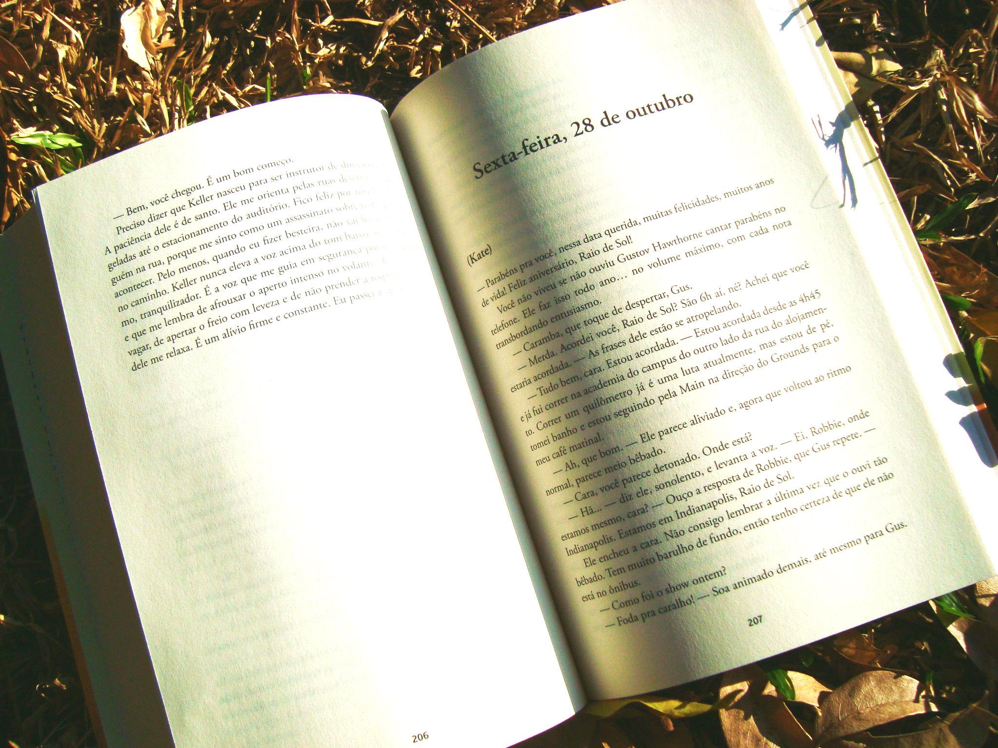 resumo do livro - raio de sol