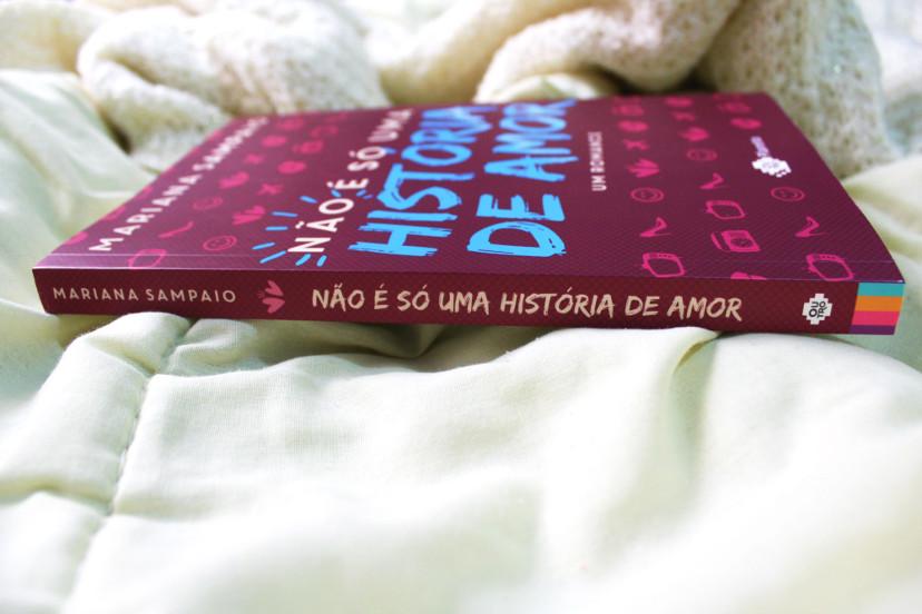 resumo do livro - não é só uma história de amor de mariana sampaio