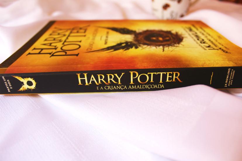 resenha do livro - harry potter e a criança amaldiçoada