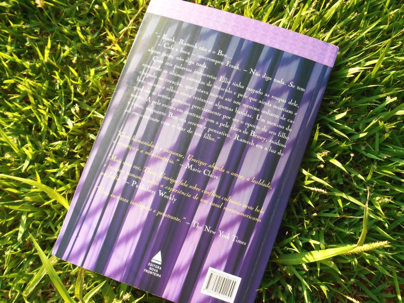 resumo do livro o tamanho do céu