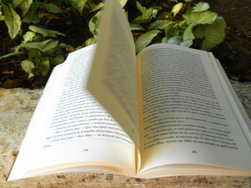 páginas do livro - o regresso do catão