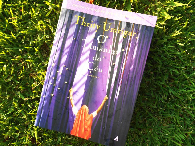 resumo do livro - o tamanho do céu - Thrity Umrigar