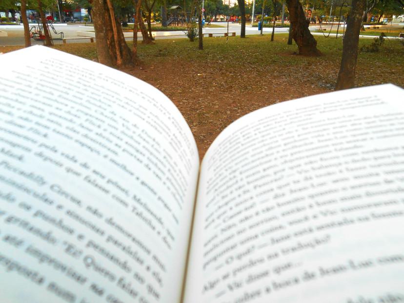 resenha do livro - Londres é nossa