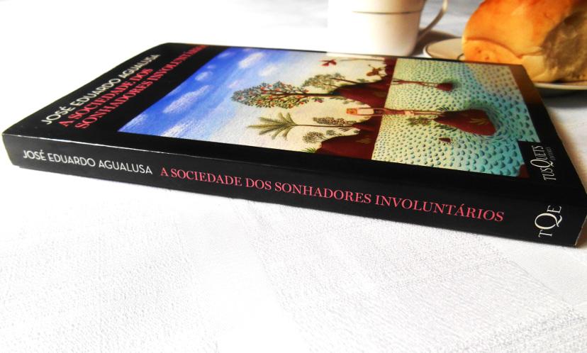 resumo-livro-a-sociedade-dos-sonhadores-involuntários