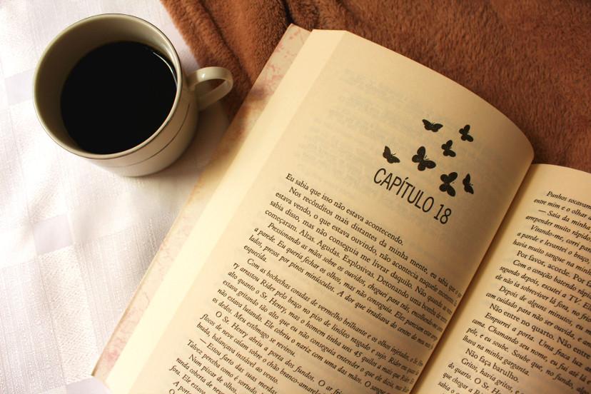 páginas-do-livro-o-problema-do-para-sempre
