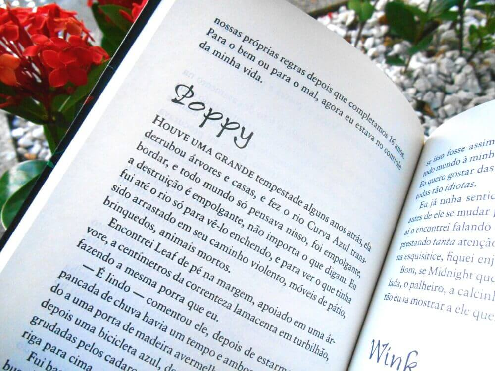 Páginas do livro: Wink Poppy Midnight