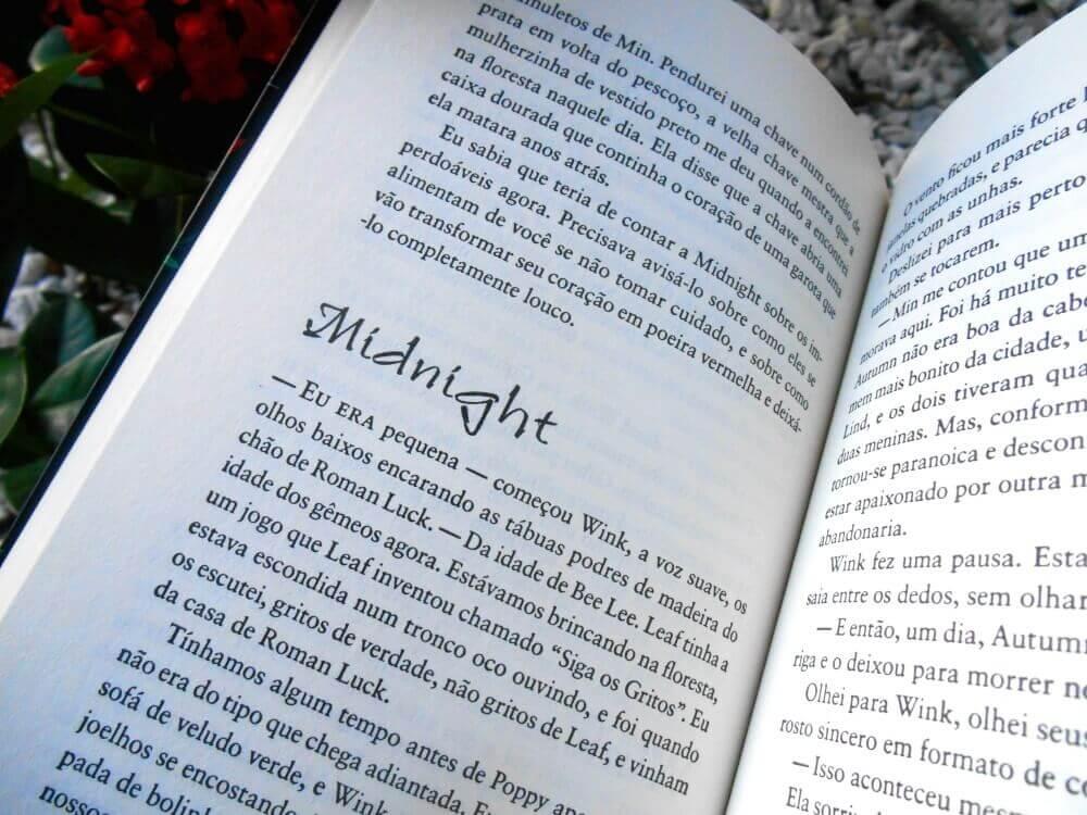 Páginas do livro- Wink Poppy Midnight