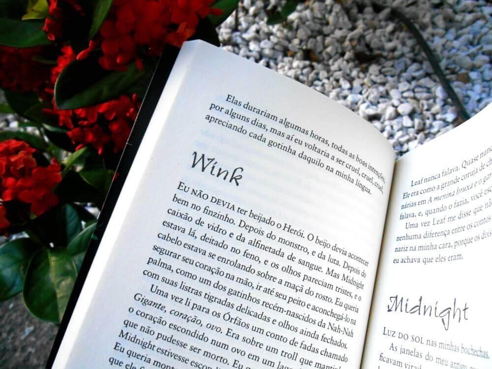 Resumo do livro - Wink Poppy Midnight