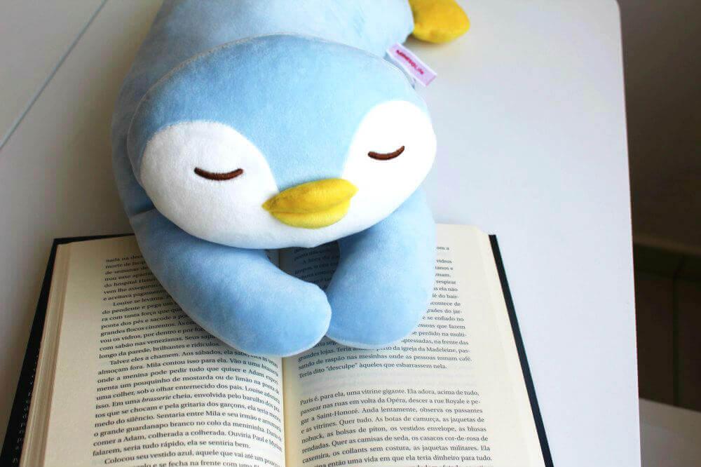 Resumo do livro - Canção de ninar